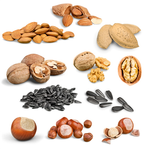 Eat Nuts, Reduce Cholesterol, and Prevent Diabetes